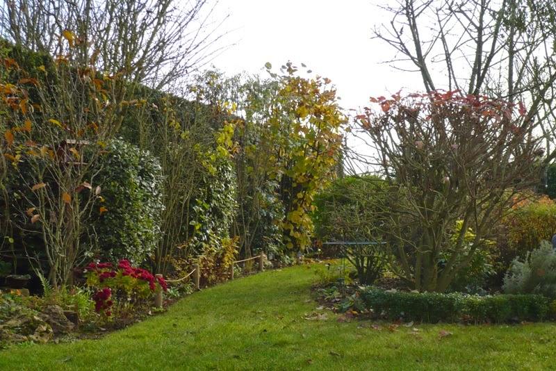 Le jardin de pacalou novembre 2014 - Jardin novembre ...