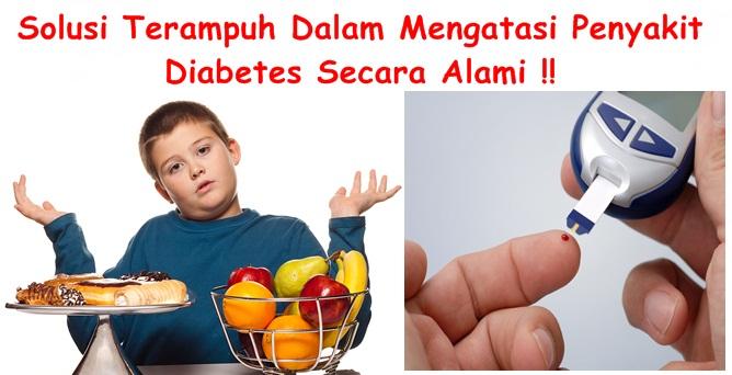 Obat Tradisional Tuntaskan Diabetes