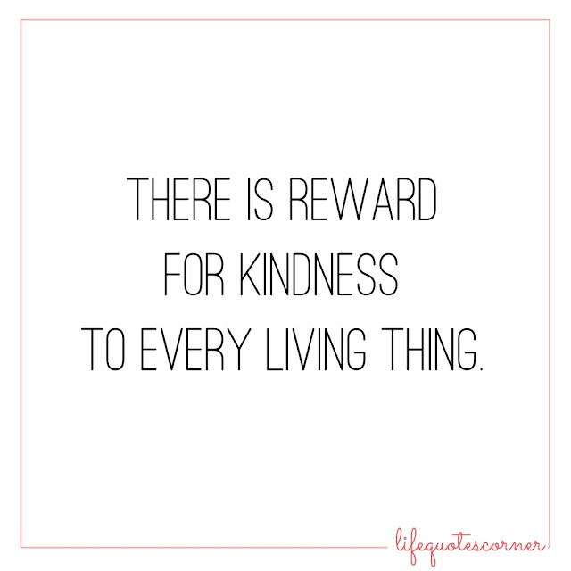 good vibes, inspirational quotes, instagram quotes, life, life quotes, pic quotes, quotes, self quotes, white background, kindness, reward