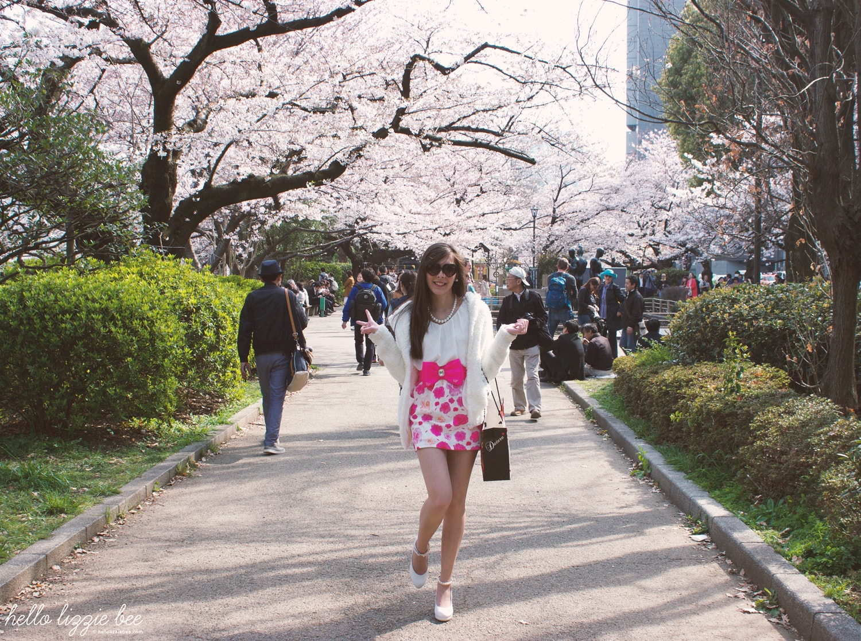hanami, cherry blossom, tokyo, gaijin gyaru, agejo