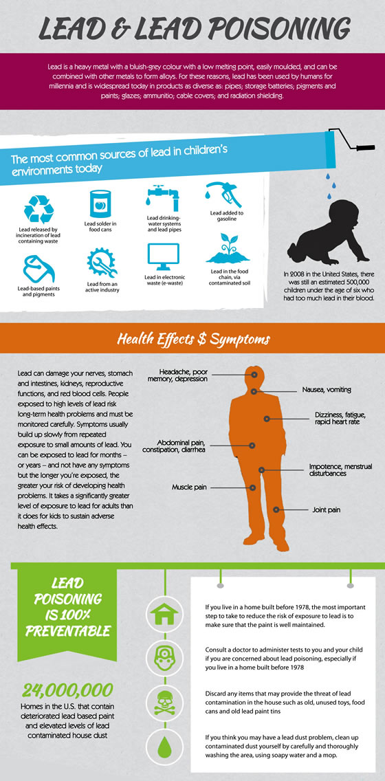 Lead poisoning infographic