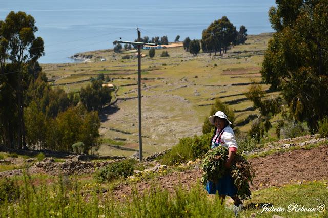 Voyage chez l'habitant au Pérou