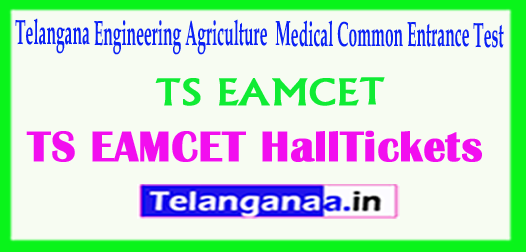 TS Telangana TS EAMCET TSEAMCET 2018 Hall Tickets Download
