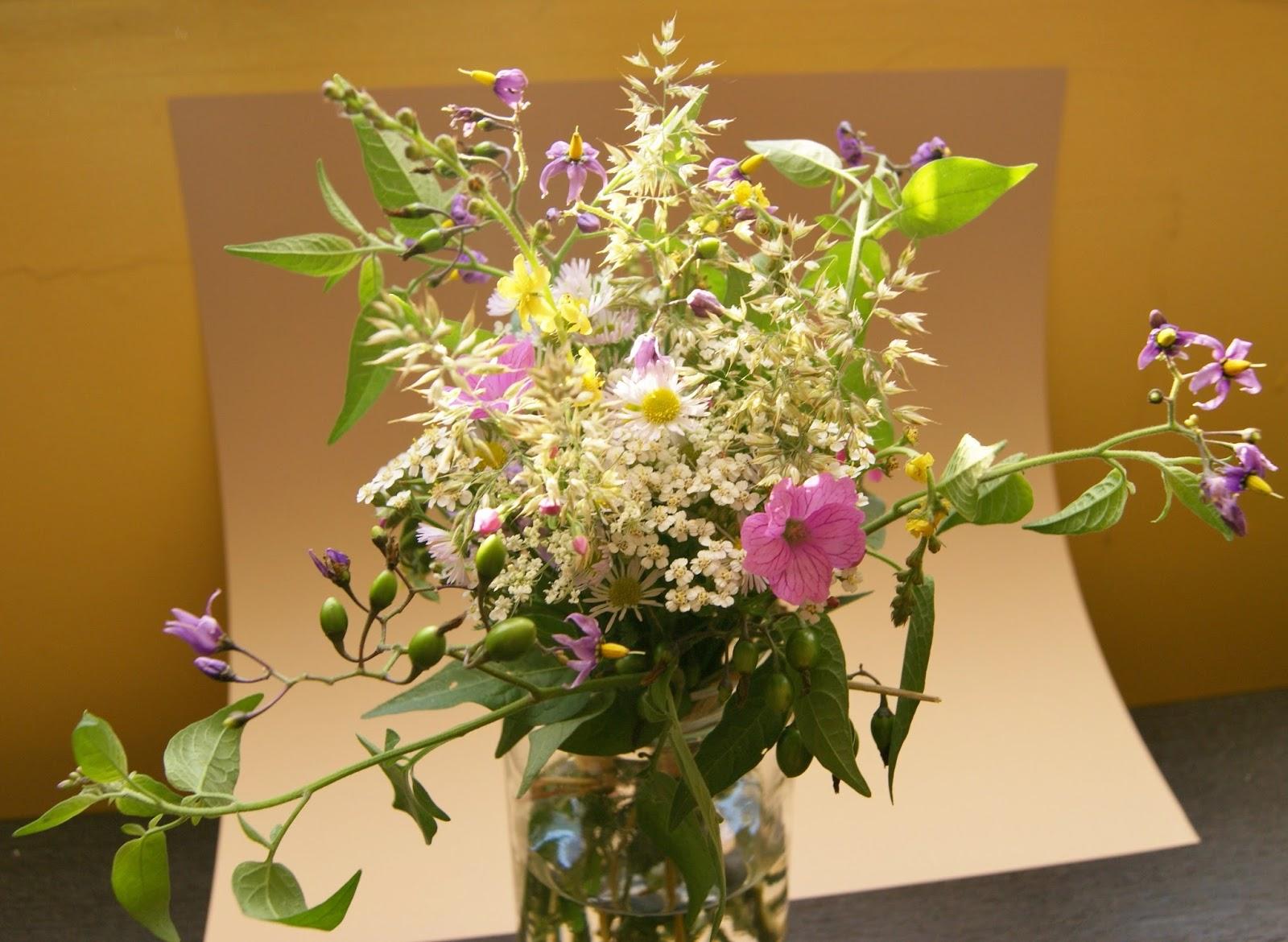 des magnolias sur ma voie lact e petit bouquet de fleurs des champs. Black Bedroom Furniture Sets. Home Design Ideas