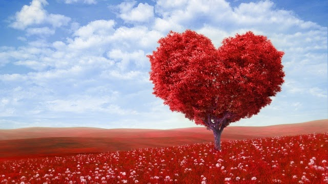 valentines day, love, heart Desktop Full HD Wallpaper