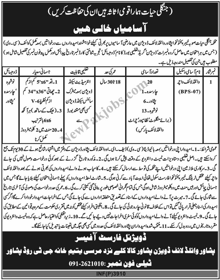 New-october-2018-jobs-in-kpk-as-wildlife-watcher