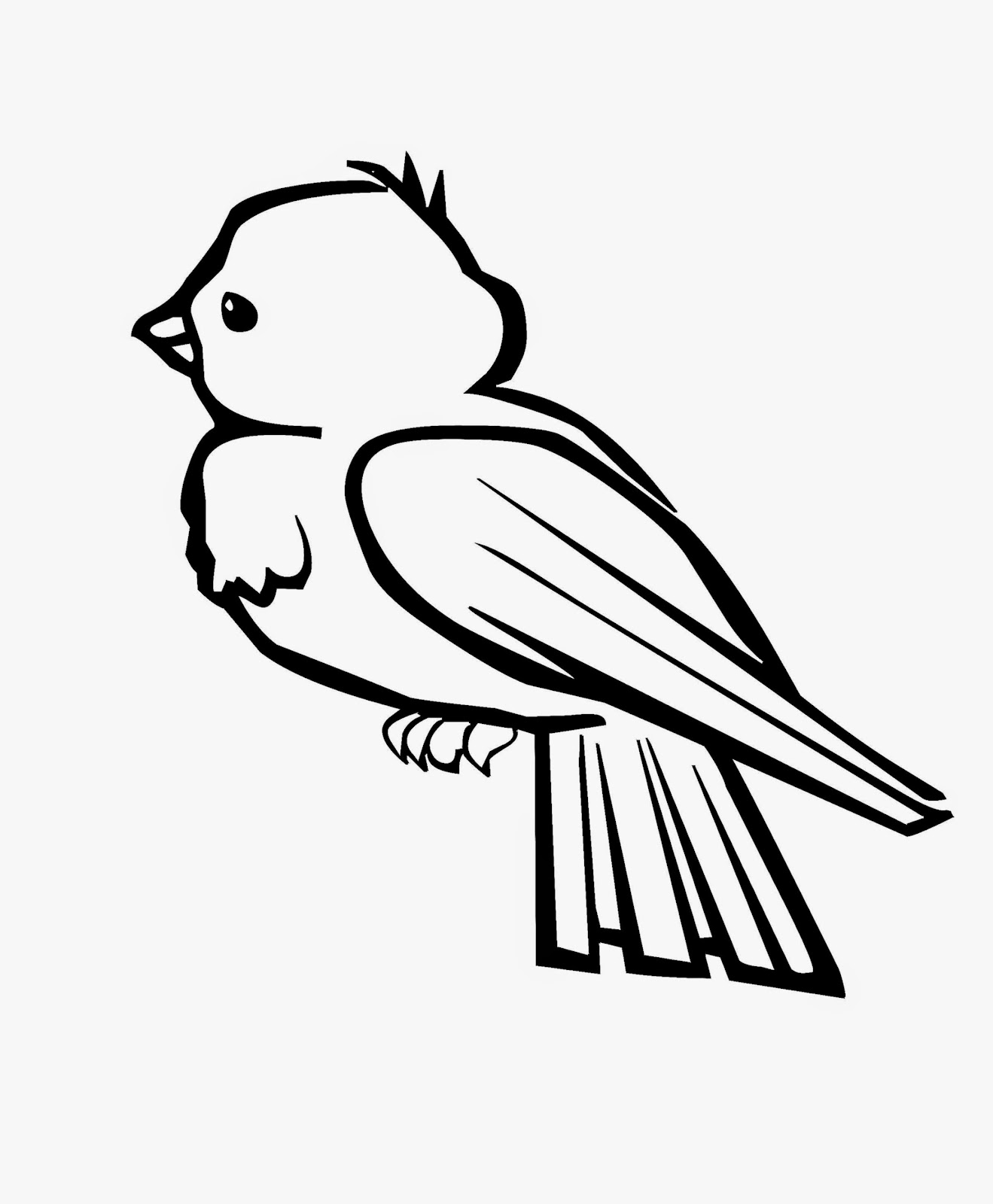 pet bird coloring pages - canary coloring pages