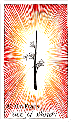 Wild Unknown Tarot Ace of Wands