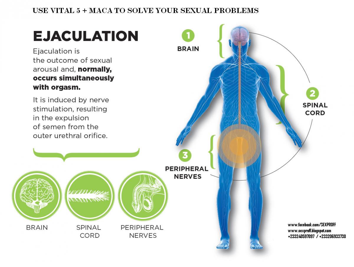 Aman Makoye Shabane\'s Blog: Causes of Premature Ejaculation