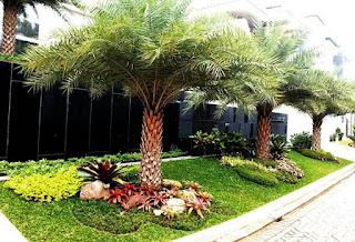 Tukang taman surabaya - taman mediterania 4