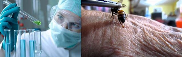 Investigadores hallaron toxina que destruye el  VIH