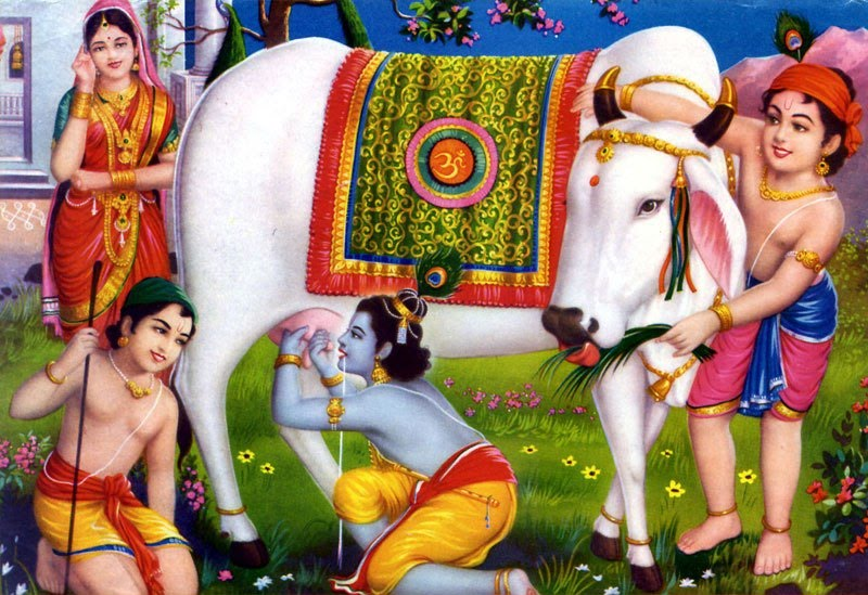 Vedas says - No Beef in Hinduism