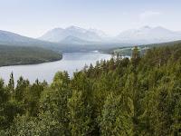 Bosques Noruega