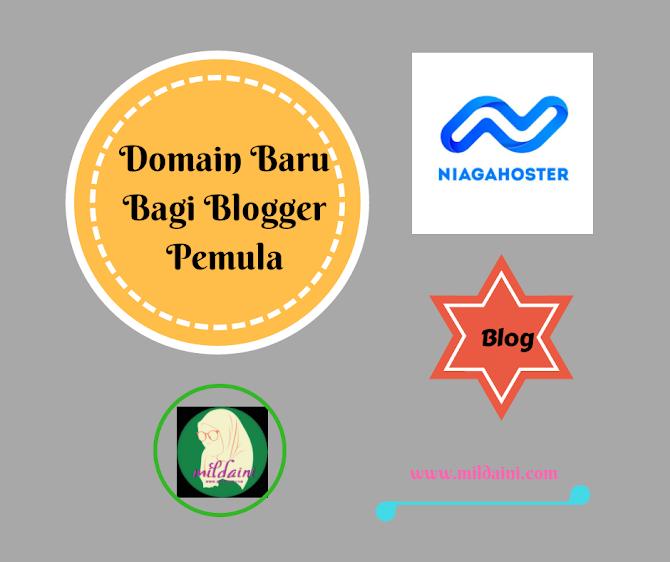 Domain Baru Bagi Blogger Pemula