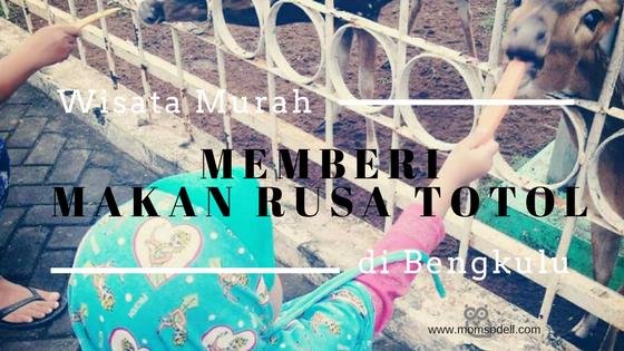 Memberi Makan Rusa Totol – Wisata Murah Di Bengkulu