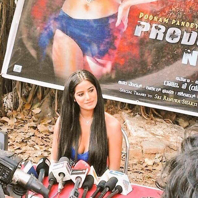 Poonam-Pandey-News-Reporter-Questionnaire