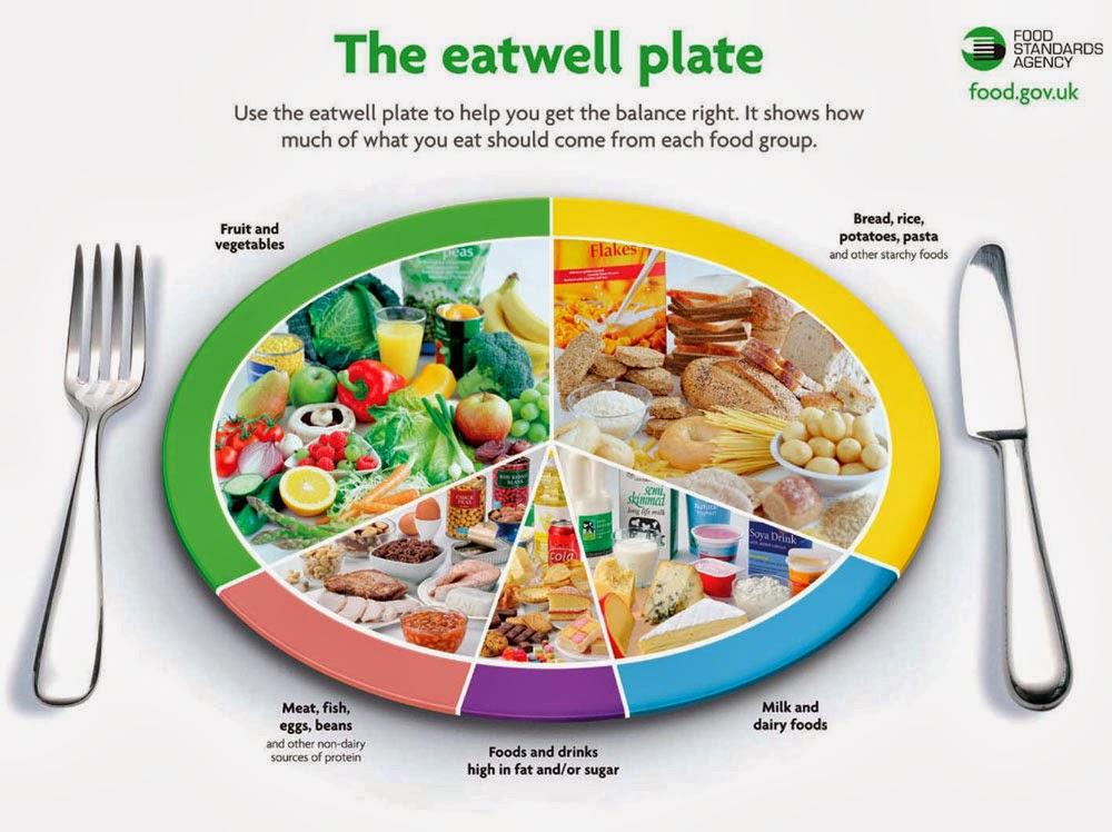 food wheel template - food balance wheel related keywords food balance wheel