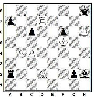 Posición de la partida Perenyi - Brandics (Hungría, 1985)