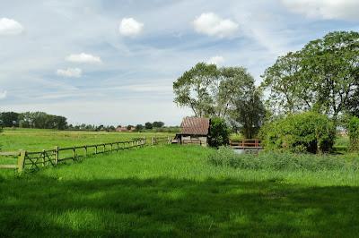 Pastures, farmland near Damme, Belgium image via rhine and mosel blogspot 2012, Belgium feature, as seen on linenandlavender.net