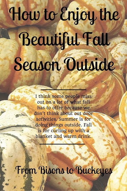 I think some people miss out on a lot of what fall has to offer because we don't think about outdoor activities. Summer is for doing things outside. Fall is for curling up with a blanket and warm drink.