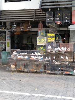 Pasar burung Depok