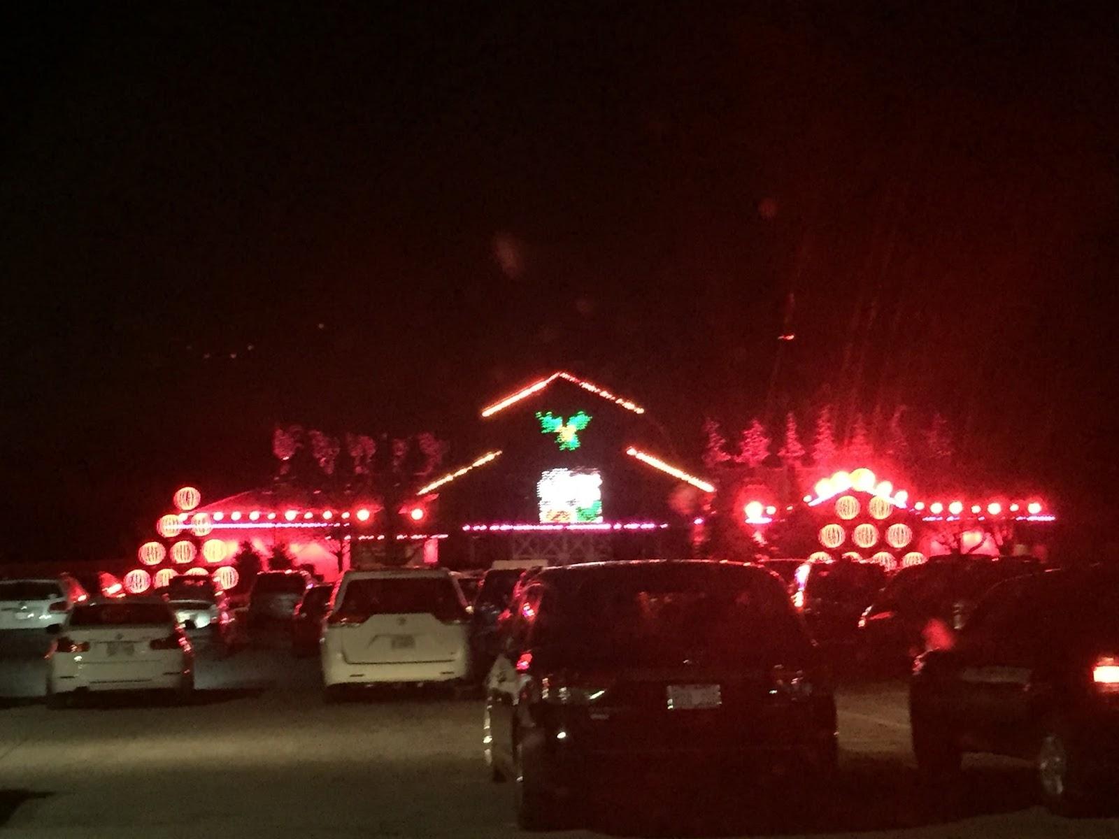 Deanna Rose Christmas Lights