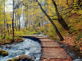 Plitvice Lakes National Park,Croatia 03