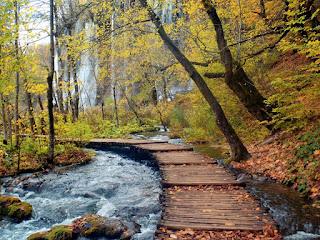Plitvice Lakes National Park,Croatia 03