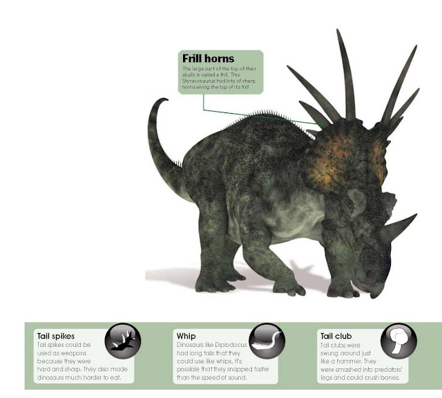 How Did Dinosaurs Defend Themselves?