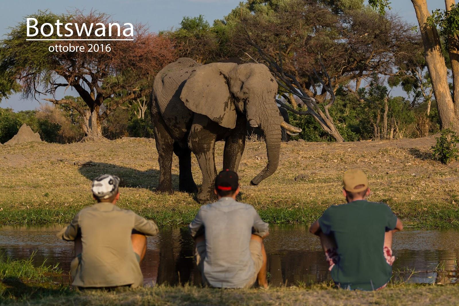 Botswana incontri