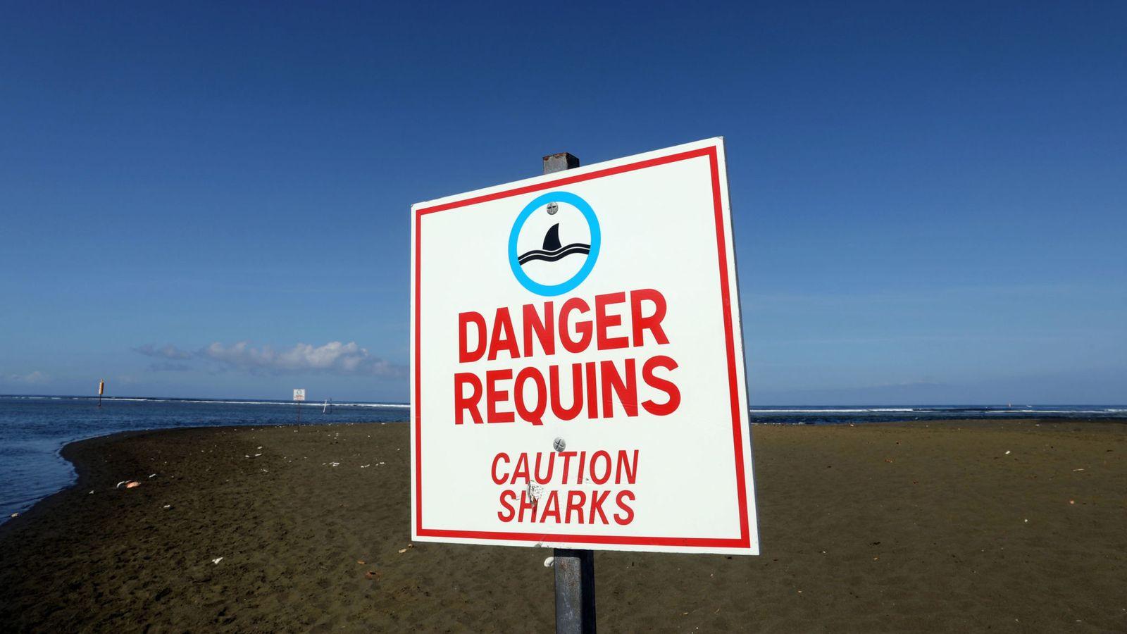 reunion beach reunion
