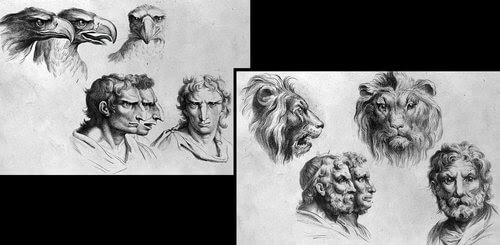 00-Animal-Transformations-Drawings-from-the-1600s-www-designstack-co