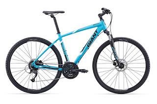 Stolen Bicycle - Giant Raom 2