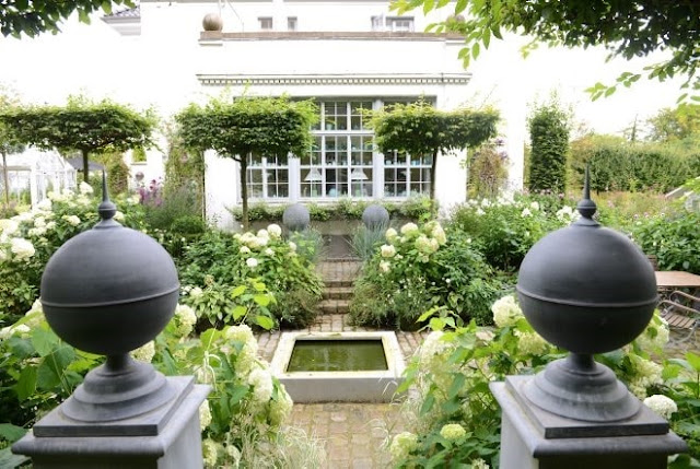 Valget falt på Agnbøkstrær i de rektangulære bedene i hagen - eksempel fra claus dalbys hage 20150910_121254[4]-min