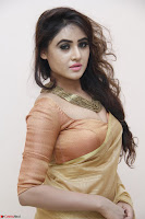 Sony Charistha in Lovely Brown Saree and Choli Spicy Pics ~  Exclusive 08.JPG