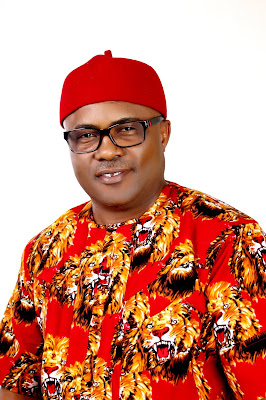 Hold PDP Opponents Responsible If Anything Happens To Parents, Relatives Of Prince Lawrence Ezeh – Campaign Organization