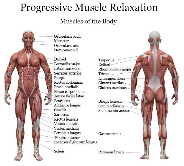 Relaxation_Musculaire_Progressive