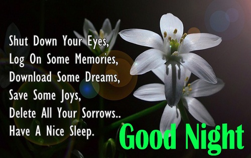 Good Night Flowers Images with Quotes