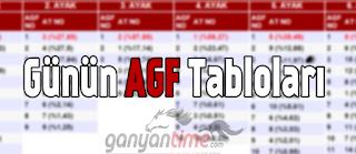 agf.ganyantime.com