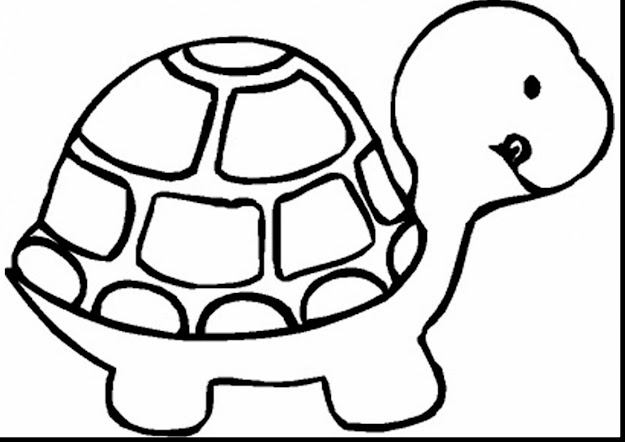 Fantastic Turtle Animal Coloring Page With Baby Animals Coloring Pages And Baby  Animals Coloring Pages Online