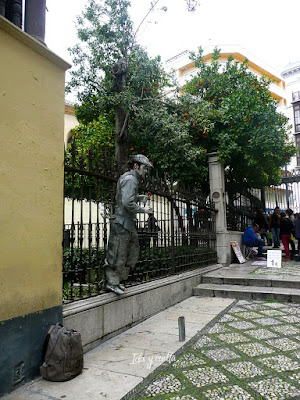 Calle Oficios Granada rejas