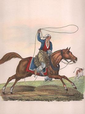Resultado de imagen para gaucho lazando a caballo