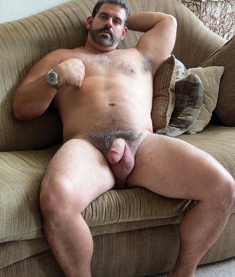 fat daddy bear tumblr