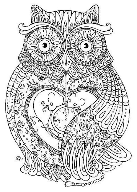 Owl  Owl Coloring Pages