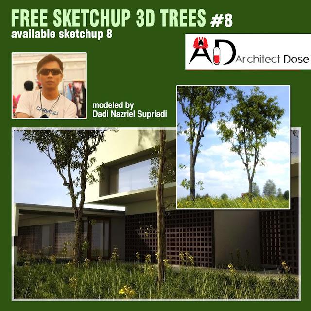 FREE SKETCHUP 3D TREES