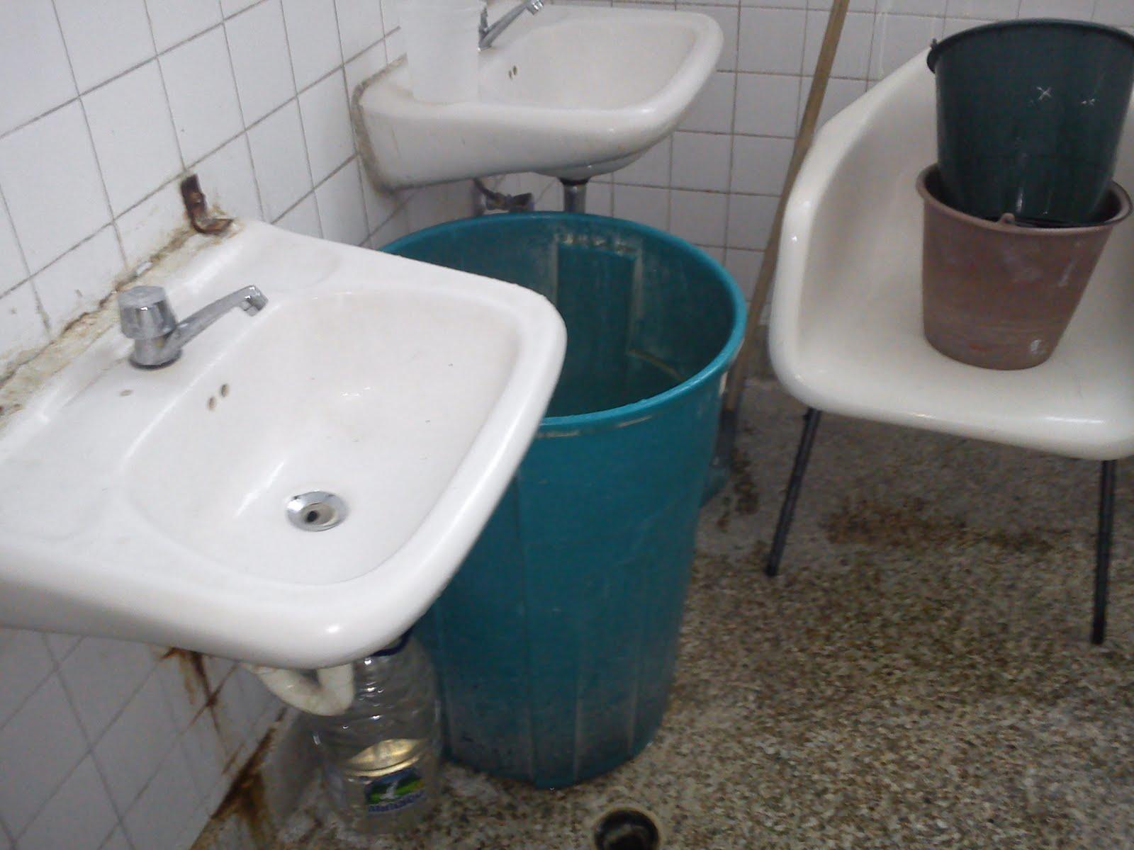 Acción doggy pública de baño 7