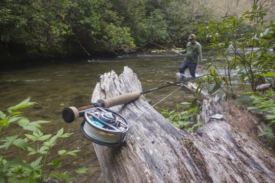 In the Great Smoky Mountains on Deep Creek, we find the Orvis 10' 3 weight rod in its natural habitat