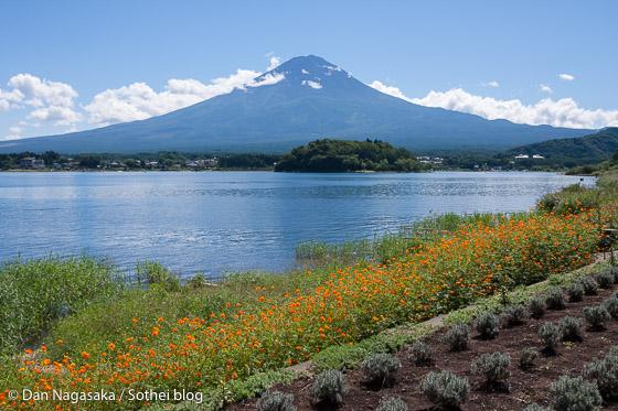 夏の富士山と河口湖