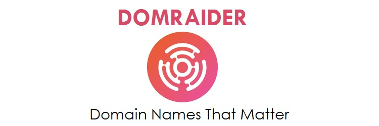Expired Domain Names Auction at DomRaider