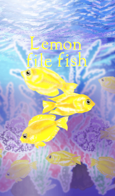 Lemon file fish